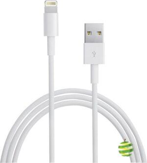 Cable Lightning 1m MD818   BestinMac.com